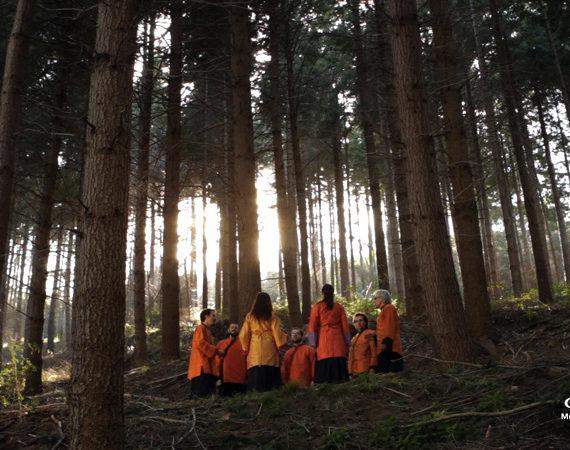 MuOM-Catalonia-forest-bosque-Cataluña-logo-web
